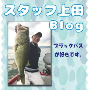 スタッフ上田釣行記ブログ