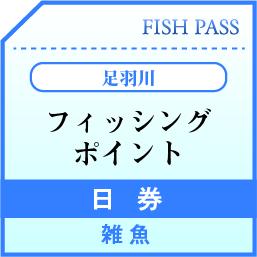 足羽川漁業協同組合 日券 雑魚 1500円