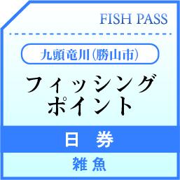 勝山市漁業協同組合 日券 九頭竜川(勝山市) 1500円