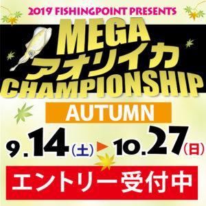メガアオリイカ チャンピオンシップ開催 9/14(土)~10/27(日)エントリー受付中!!