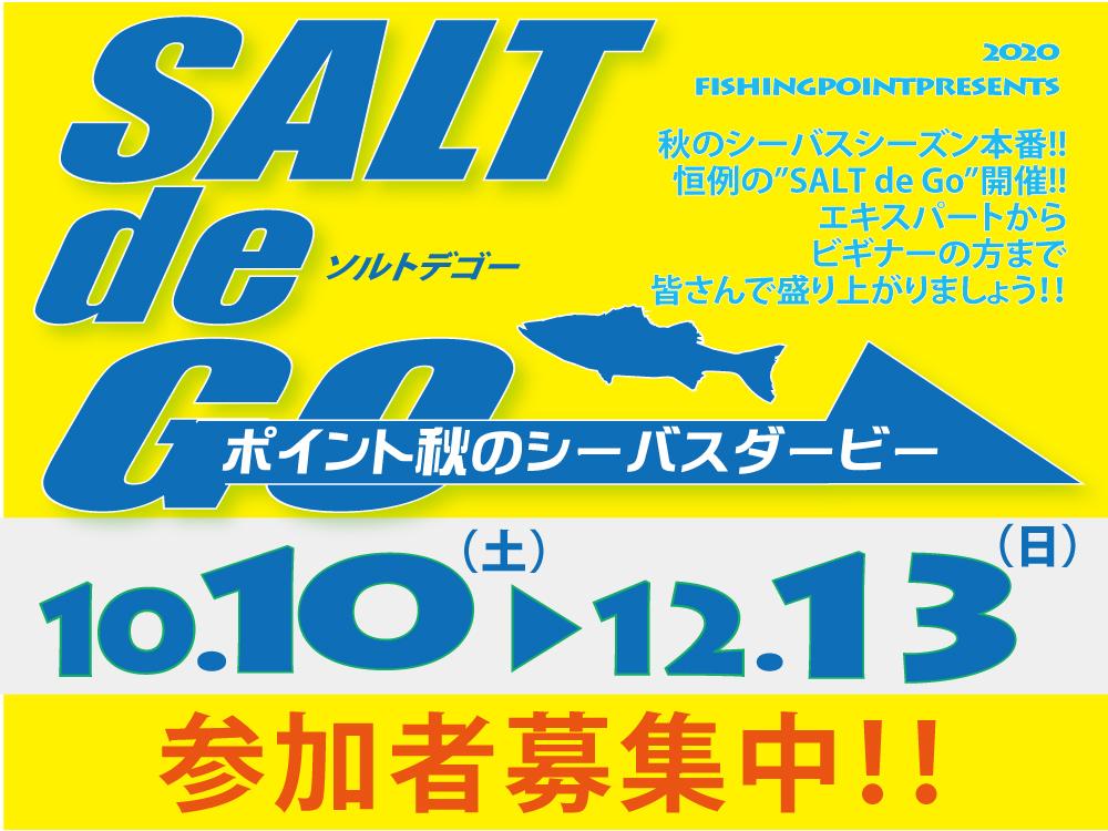 salt_de_go_top
