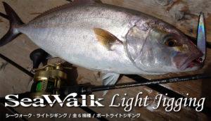 seawalk ライトジギング ybhpへ移動