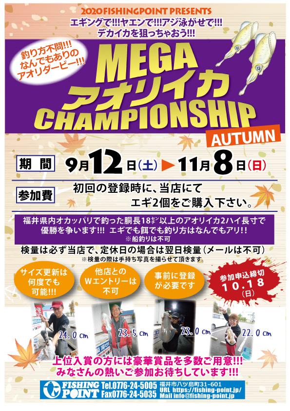 メガアオリイカ チャンピオンシップ開催!! 9/12~11/8