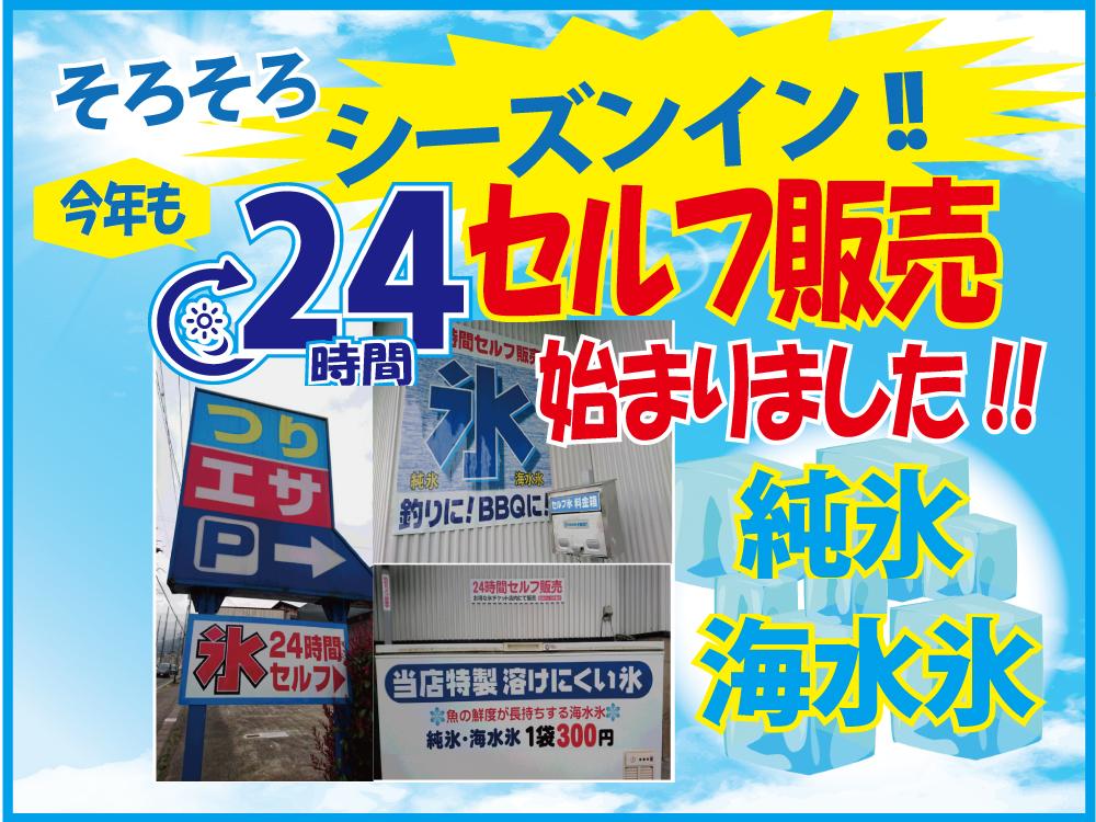 24_ice_sale
